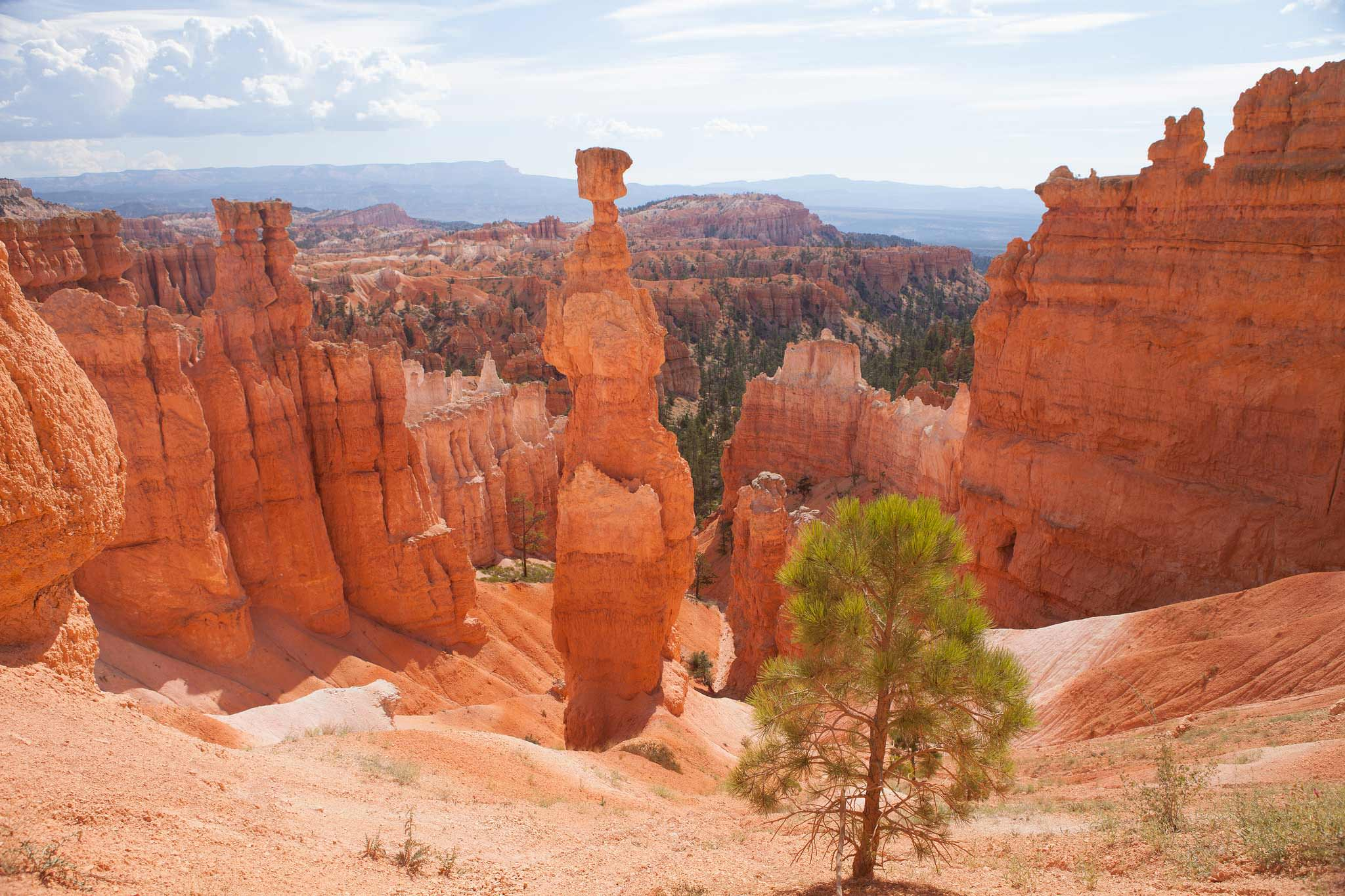 Bryce-canyon-overlook